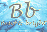 ALC・押出成形版 パネル自動割付システム「Bb(Brief & bright)」